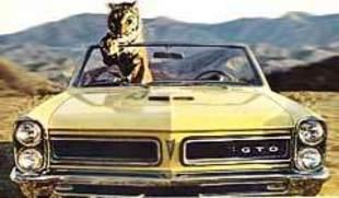 Les muscle cars américains
