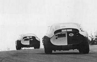 SHELBY Cobra Daytona -  - Page 3.com