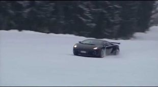 Gallardo à la neige