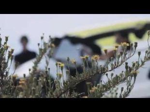 Vidéo Citroën : la genèse de la ligne DS - Essai