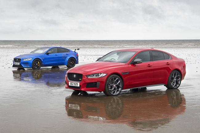 Jaguar : oeuvre éphémère pour les modèles XE sportifs
