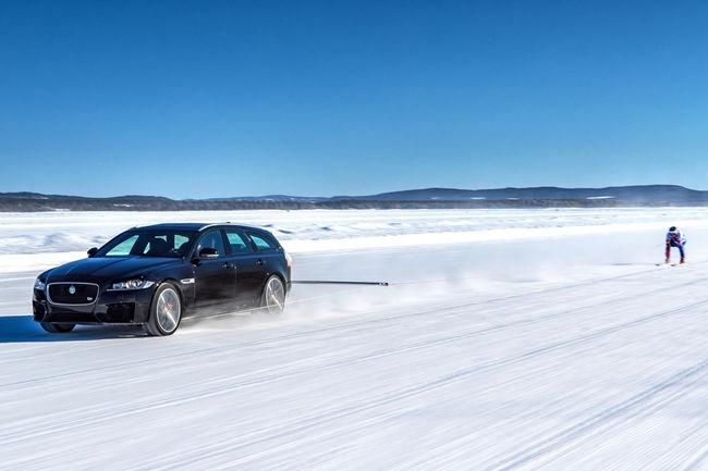 Record insolite pour Jaguar et le skieur Graham Bell