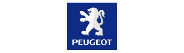 Peugeot 308 GT : en attendant mieux...