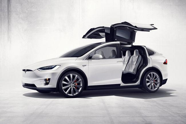 Tesla Model Y : première image
