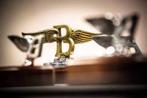 Bentley : évolution du logo Flying B