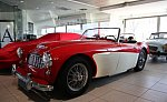 AUSTIN HEALEY 100/6 BN4 cabriolet Rouge occasion