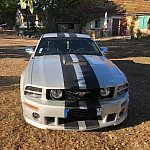 FORD MUSTANG V (2005-14) Serie 1 Roush Stage 1 Pack luxe coupé Gris clair occasion
